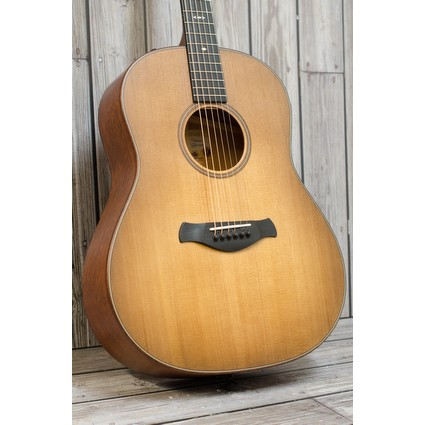 Taylor 517e Builder Edition WHB Top (314152)